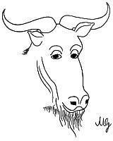 Un GNU philosophe